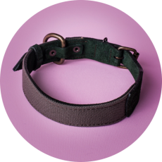 Leather&canvasCollar_KipraPets_Collars-and-Leashes-14