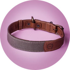 GreenCanvas&LeatherCollar_KipraPets_Collars-and-Leashes-13